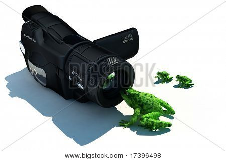 Frog and camera on a white background poster