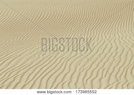 Rippled fawn desert or beach sand texture. Sand dune texture in african desert.