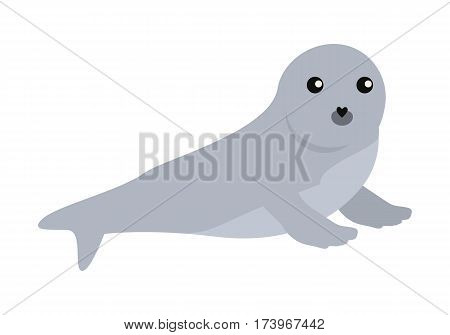 Earless seal flat style vector. Wild predatory animal. Northern fauna species. Cute baby of sea calf cartoon on white background. For nature concepts, children s books illustrating, printing materials