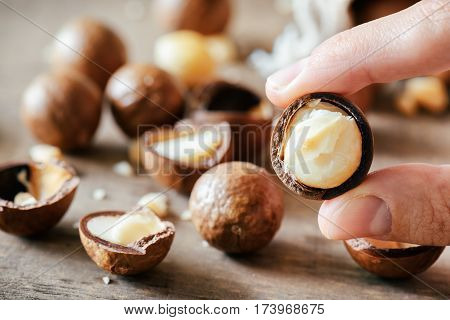 Closeup View Of Fingers Holding Macadamia Nut