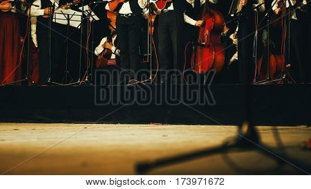 Acoustic Orchestra On Stage