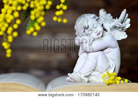 Little angel figurine and mimosa flower on the book