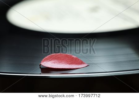 Composition of single red dead leaf on black vinyl music plate loneliness concept