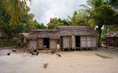 Traditional african malagasy hut in Maroantsetra region typical village in north east Madagascar in Masoala national park Toamasina Province. poster