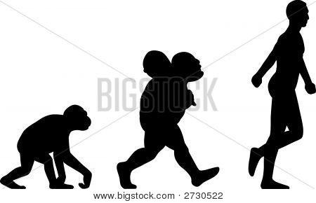 Silhouette Human Evolution