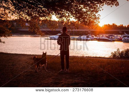 The Guy Walking His Dog At Sunset