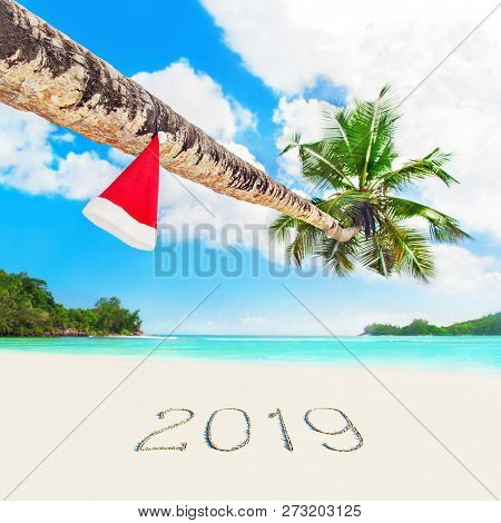 Red Santa Hat On Coconut Palm Tree At Perfect Tropical White Sandy Ocean Beach At Season Year 2019 S