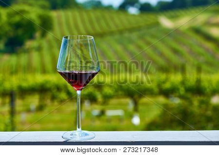 Wine tasting in California. Glass of red wine and vineyards.