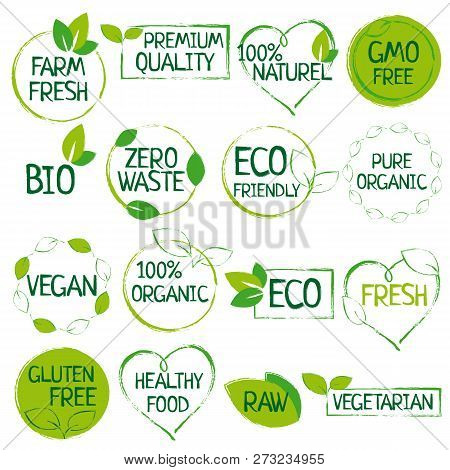 Green Set Of Organic Food, Farm Fresh, Natural Product, Zero Waste Elements, Labels, Logo For Vegan