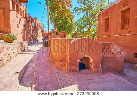 The old street of the terrace mountain village of Abyaneh with red adobe houses, lush green gardens and interesting ancient historic landmarks, Iran. poster