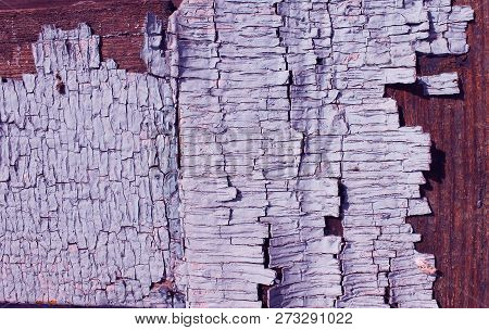 Old Wooden Texture With Peeling Paint , Old Wooden Background With Remains Of Pieces Of Scraps Of Ol