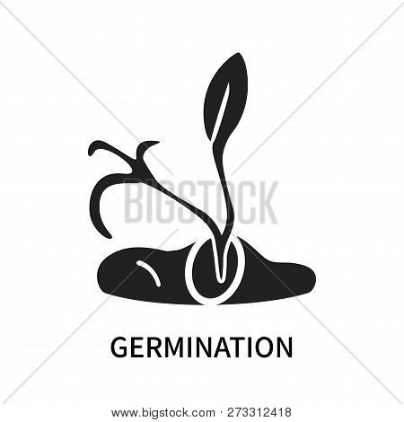 Germination Icon Isolated On White Background. Germination Icon Simple Sign. Germination Icon Trendy