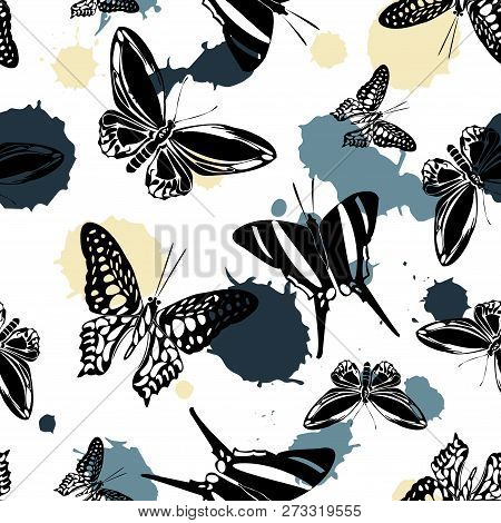 Pretty Seamless Butterfly Kite Background With Blotter On White. Nature Butterfly Hover Theme Vector