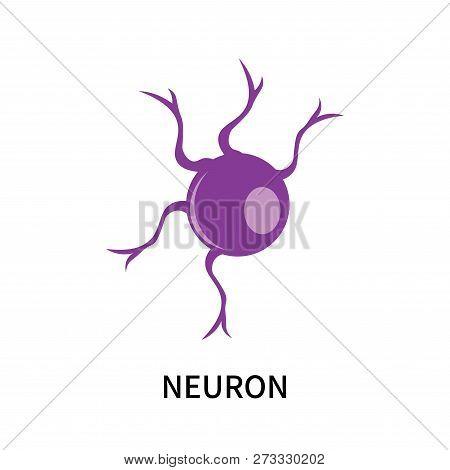 Neuron Icon Isolated On White Background. Neuron Icon Simple Sign. Neuron Icon Trendy And Modern Sym