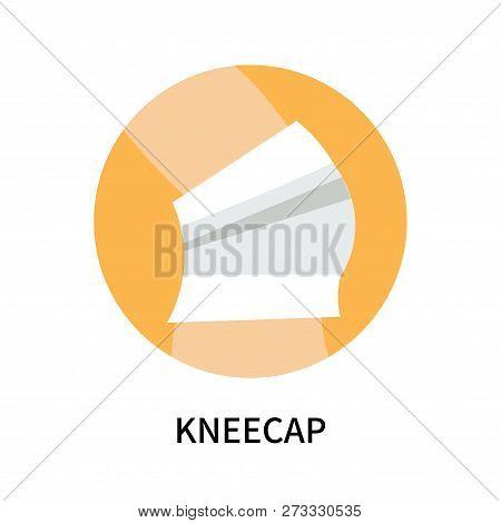 Kneecap Icon Isolated On White Background. Kneecap Icon Simple Sign. Kneecap Icon Trendy And Modern