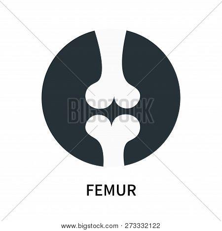Femur Icon Isolated On White Background. Femur Icon Simple Sign. Femur Icon Trendy And Modern Symbol