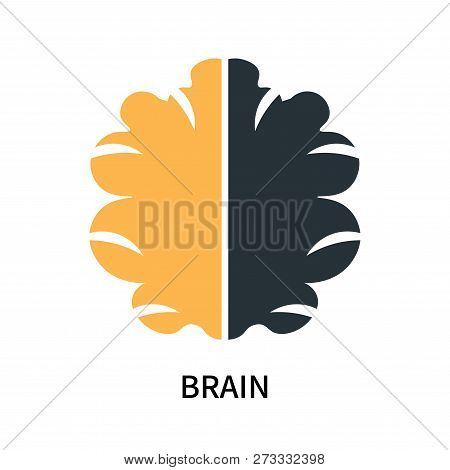 Brain Icon Isolated On White Background. Brain Icon Simple Sign. Brain Icon Trendy And Modern Symbol