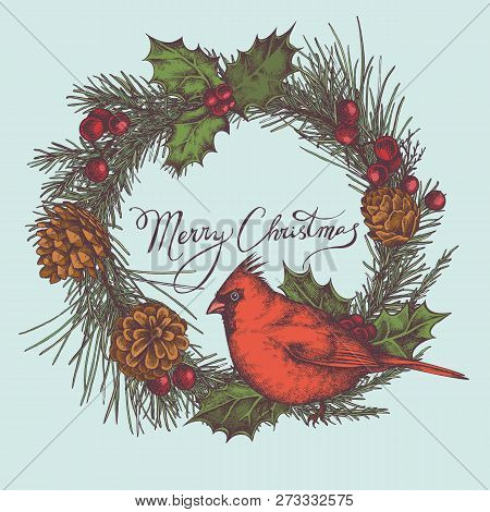 Vector Composition With Colored Cardinal, Cones, Holly, Rowan, Lettering, Pine Branch, Spruce, Redwo