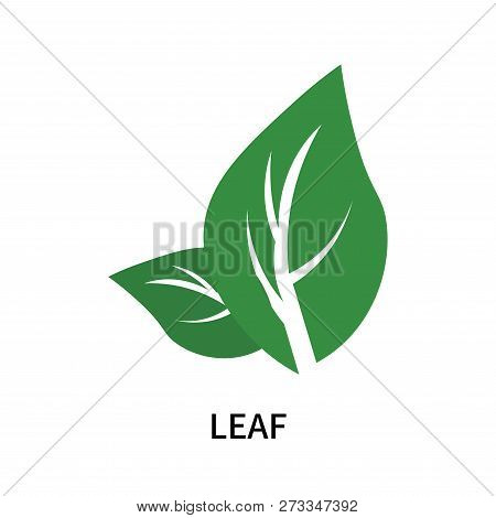 Leaf Icon Isolated On White Background. Leaf Icon Simple Sign. Leaf Icon Trendy And Modern Symbol Fo