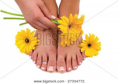 Pedicured pies, cuidada de la mano y gerberas