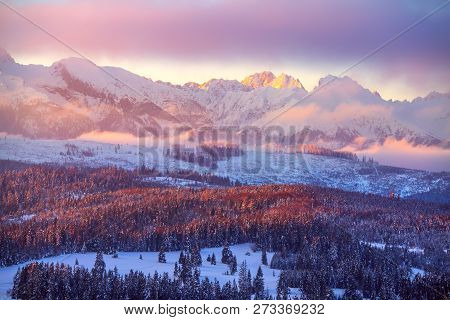 Winter Mountains. Beautiful Landscape With Snowy Summits In Pink Morning Sunlight. Winter Nature. Wi