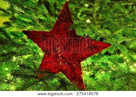 Red Christmas star in front of green pine branches, back illuminated by led lights