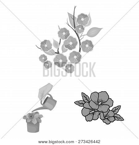 Vector Illustration Of Spring And Wreath Sign. Collection Of Spring And Blossom Vector Icon For Stoc