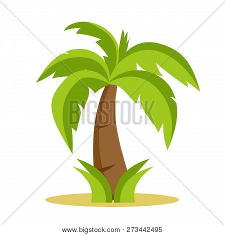 Palm Tree Isolated On White Background. Palm Tree Cartoon Style. Vectors Stock.