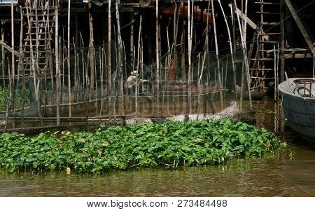 A Floating Netted Fish Pen Being Held Up With Wooden Poles In A Floating Village On A Lake In Cambod