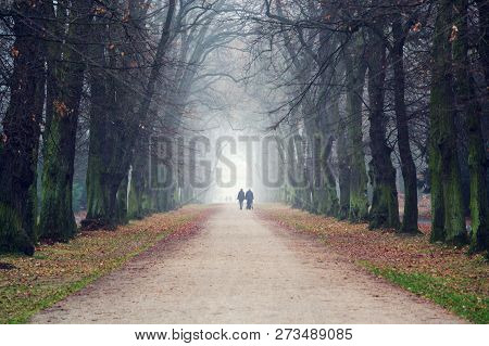 Couple Holding Hands Walking In Beautiful Romantic Autumn Alley, Cloudy Foggy Day, Partner Issues Ps