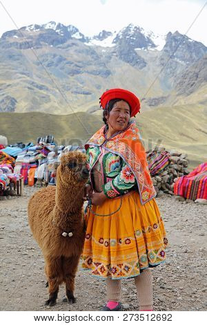 Limite Vial, Puno, Peru - October 23, 2018: Unidentified Woman With Alpaca On Limite Vial - 4,335 M