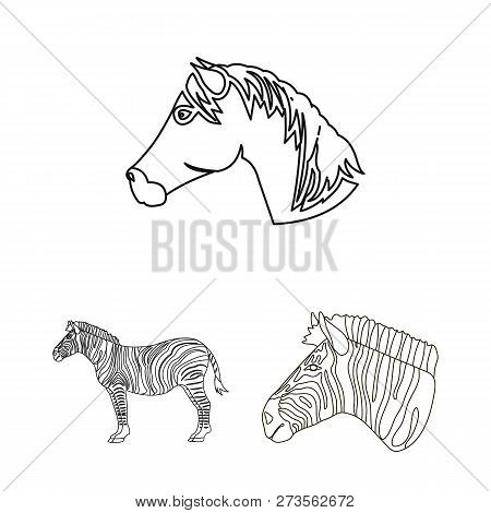 Isolated Object Trot Vector Photo Free Trial