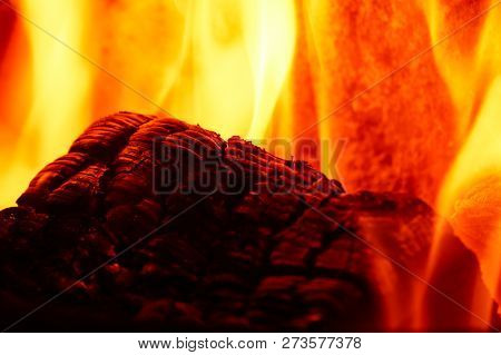 Wood Log On The Fire - Background