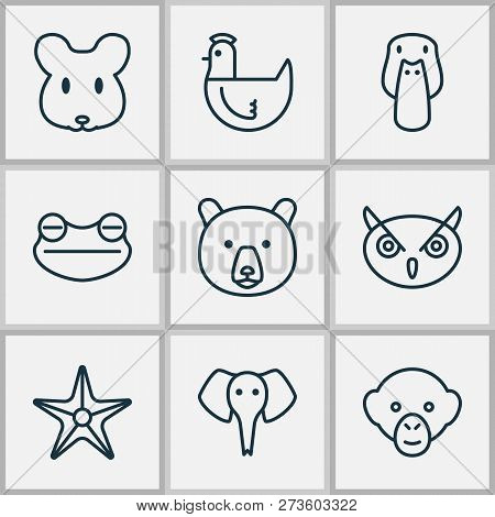 Zoology Icons Set With Mallard, Mouse, Sea Star And Other Duck Elements. Isolated Vector Illustratio