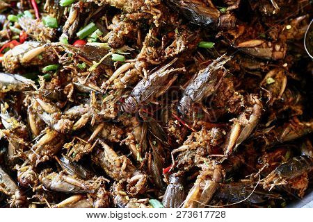Deep Fried Crickets Sold As A Street Food Snack In Spider Town, Cambodia