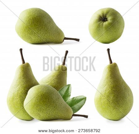 Ripe Pears With Leaves Isolated On A White Background. Three Pears With Copy Space For Text. Green P