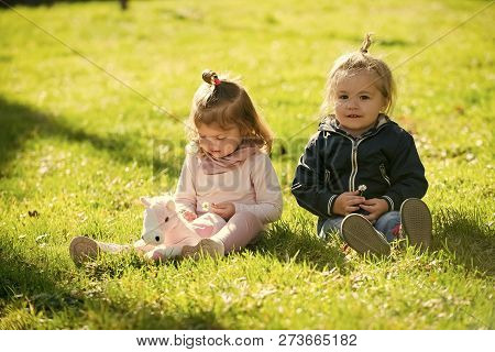 Brother And Sister Play With Toy Horse On Sunny Day. Boy And Girl Pick Flowers On Green Grass. Famil