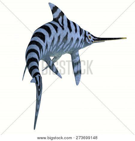 Eurhinosaurus Reptile Stripped Pattern 3d Illustration - Eurhinosaurus Was A Carnivorous Ichthyosaur