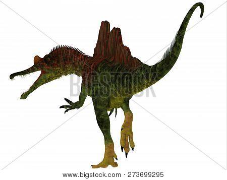 Ichthyovenator Dinosaur Tail 3d Illustration - Ichthyovenator Was A Carnivorous Theropod Dinosaur Th