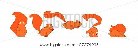 Cartoon Squirrel Hand Drawn