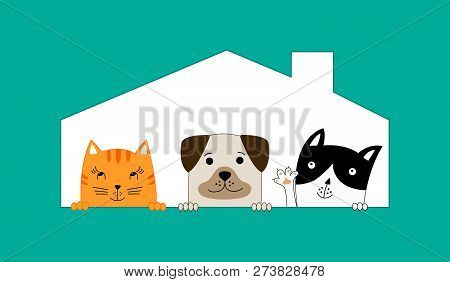 Two Cats And One Dog Sitting In Their House. Pet Shop.  Funny Dog And Cute Cats Best Friends. Vector