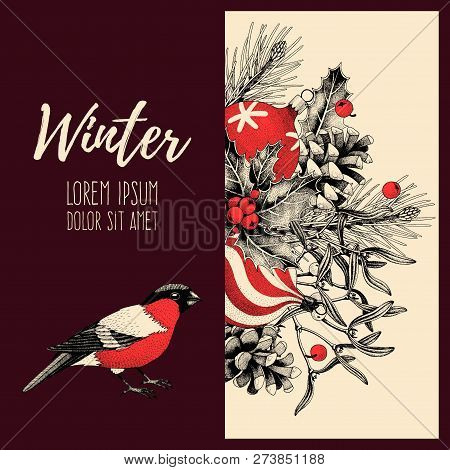 Vector Vintage Card With Finch And Holly