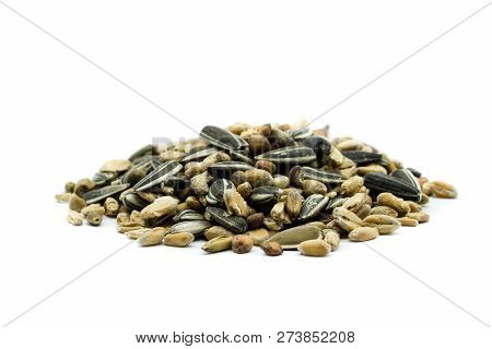 Birdseed Heap Feed Isolated On White Background