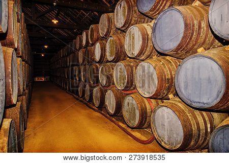 Old Oak Barrels . Port Wine Storage Cellars