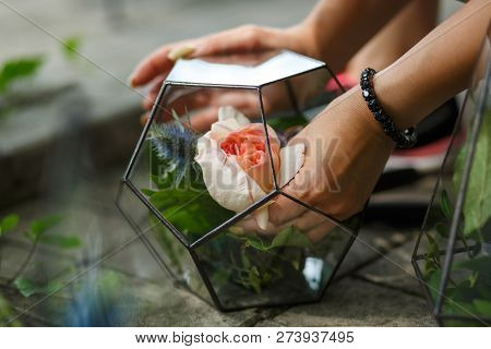 Florarium With Fresh Succulent Flowers. Event Fresh Flowers Decoration. Florist Workflow. Wedding Ba