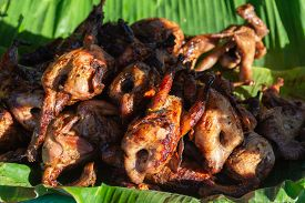 Rows Of Quails Are Grilled Over Charcoal Stove.