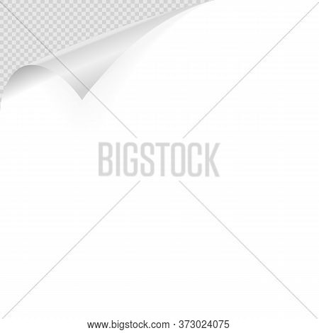 Curled Corner. Realistic Curled White Paper Corner With Shadow On Transparent Background Vector Illu