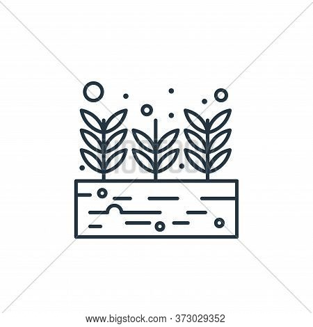 growing plant icon isolated on white background from  collection. growing plant icon trendy and mode