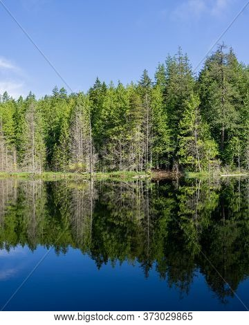 Beautiful Small White Lake Surraunded By Tall Forest In British Columbia Canada.