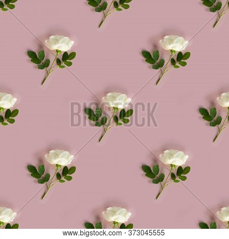 Seamless Pattern With White Rose With Steam And Green Leaves On Pastel Pink Background. Photographic